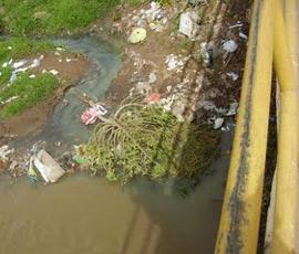 Piezas arqueológicas son echadas al río
