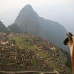 Más de un millón y medio de turistas en Cusco en el 2009