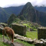 Boletos a atracciones de Cusco desde la comodidad de su hogar