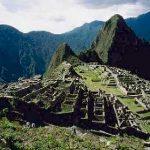 Vegetación y hongos  dañan piedras de Machu Picchu